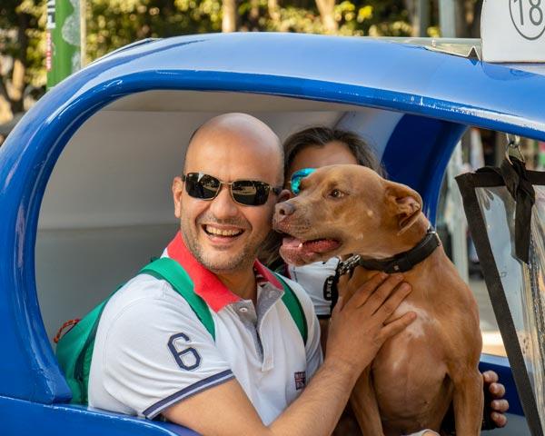 Pet Taxi Allianz